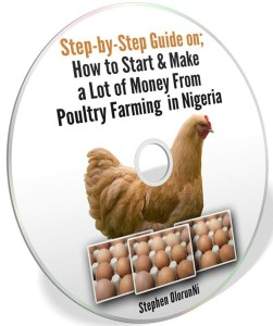 poultry farming vedios