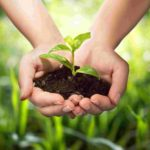 Agriculture & Farming in Nigeria; the hidden business opportunities