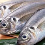 Fish Farming in Kenya (How to start and make money)