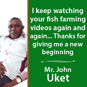 Fish farming training in Nigeria