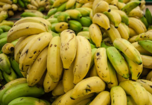 How To Start Plantain Farming Business In Nigeria/Africa.