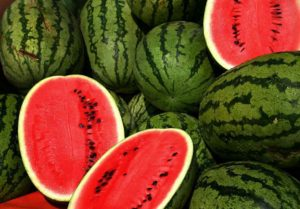 Water Melon; vegetable business in Nigeria