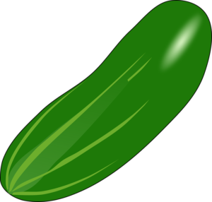 Cucumber; vegetable business in Nigeria